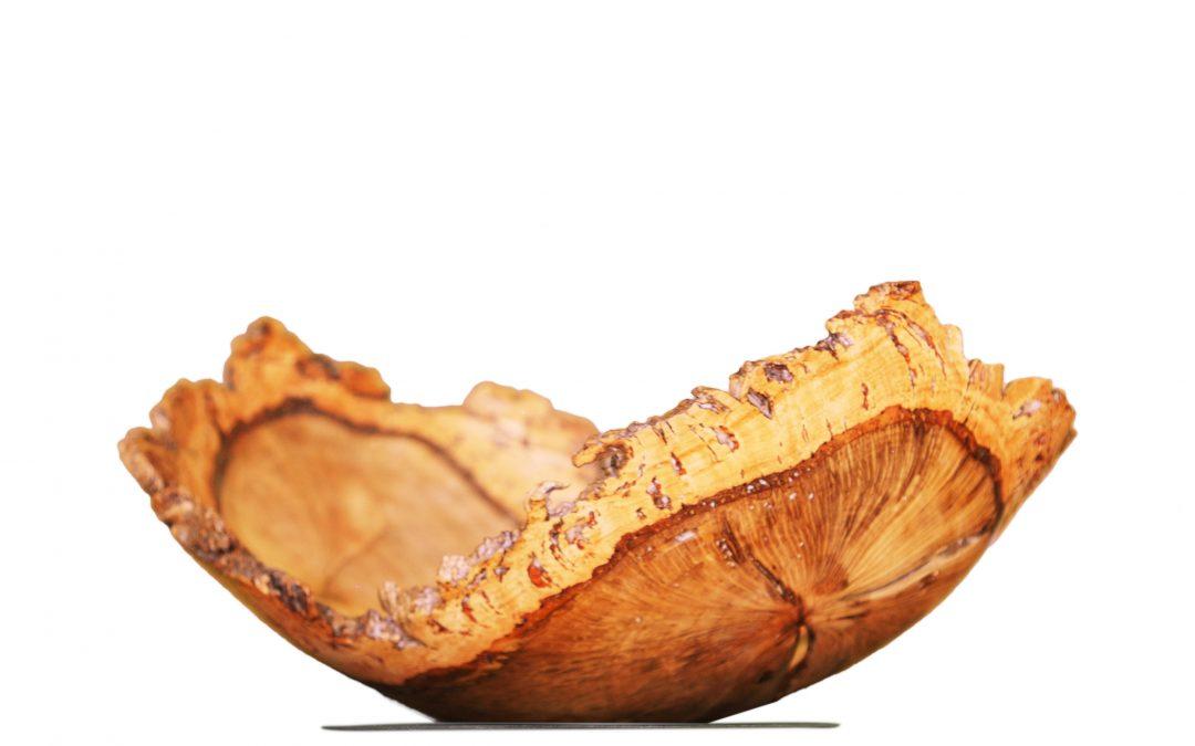 Cork Oak (4340)