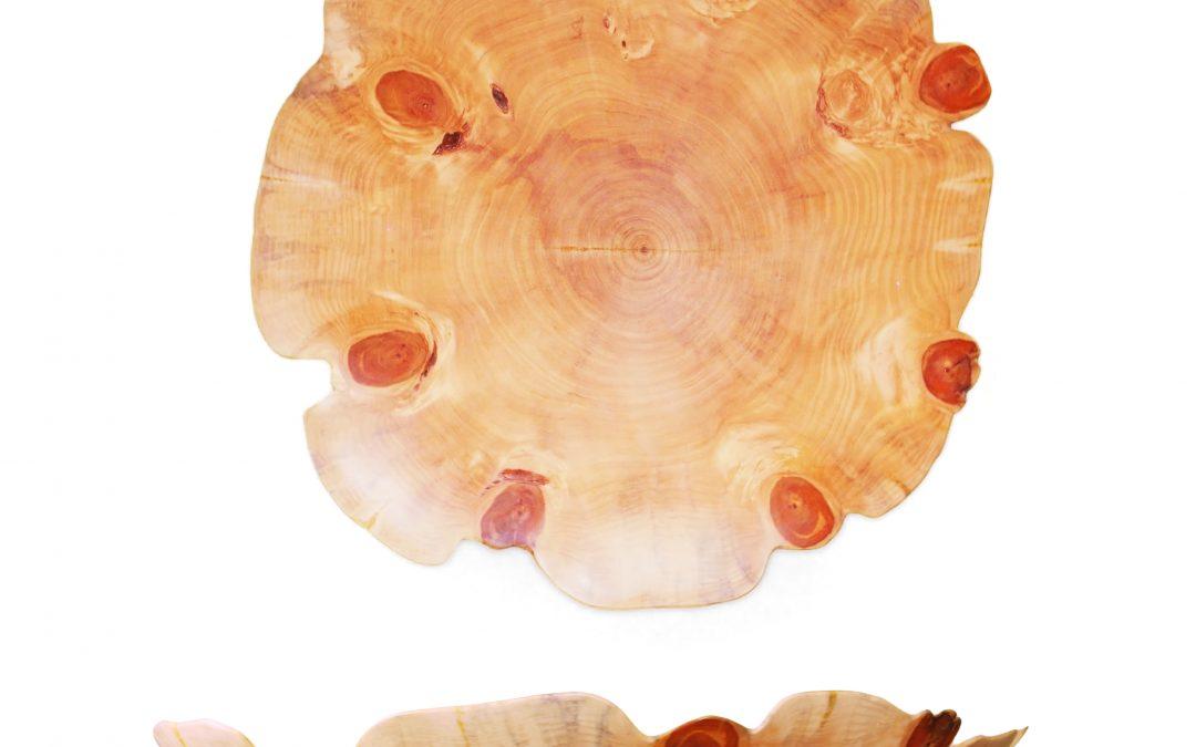 Nofolk Pine (4330)